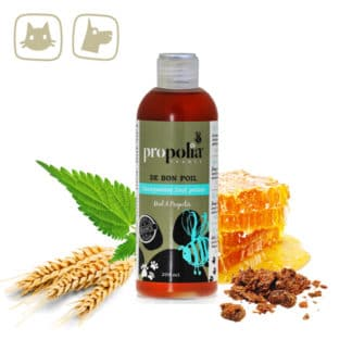 Animal shampoo with propolis and honey - Lekkerhoning.nl