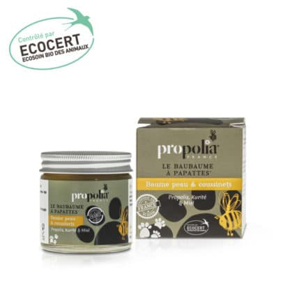 Propolis balm for skin and foot pad. Animal pet care with Propolis