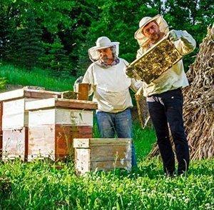 Honing-souffle Perfecte originele cadeau voor elke gelegenheid - Lekkerhoning.nl