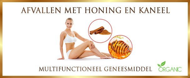 Lose weight with honey and cinnamon - Lekkerhoning.nl