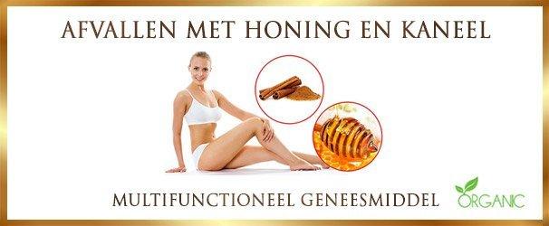 Afvallen met honing en kaneel - lekkerhoning.nl