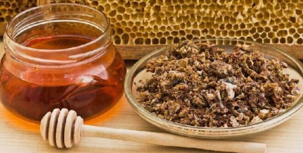 what is propolis