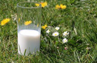glazen melkflessen kopen