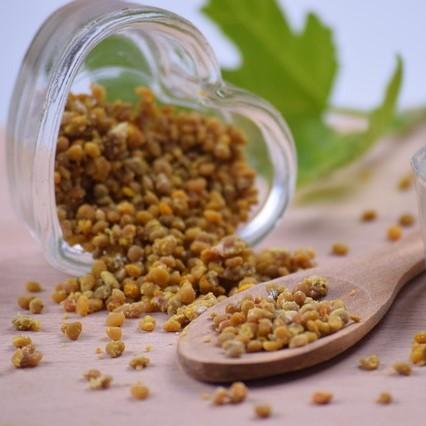 pollen grains experiences